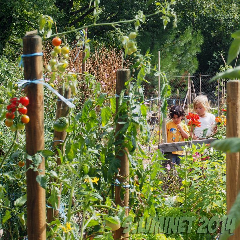 Mairie de prades l 39 info 2014 les jardins familiaux for Jardin familiaux