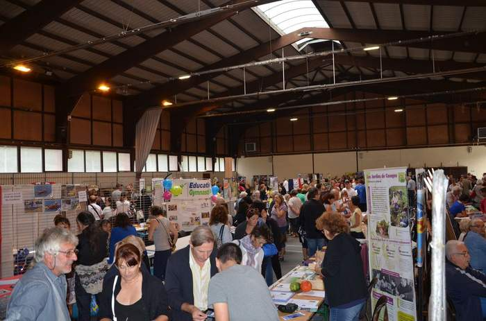 forum des associations 2017 (19)